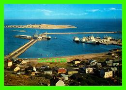SAINT-PIERRE ET MIQUELON - LE NOUVEAU PORT - ANIMÉE DE BATEAUX - JEAN BRIAND, PHOTOGRAPHE - - Saint-Pierre-et-Miquelon