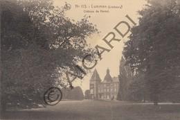 Postkaart / Carte Postale LUMMEN - Château De Hamel  (A169) - Lummen