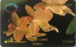 TRINITE & TOBAGO  -  Phonecard  - TSTT  -  ORCHID (Vanda)  -  TT $ 100 - Trinidad En Tobago