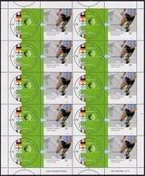 Argentina - 2002 - Football - Coupe Du Monde 2002 - Champions Du Monde De Soccer Du 20e Siècle. - Argentine