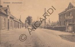 Postkaart / Carte Postale OVERPELT - Schuttersboom  (A168) - Overpelt