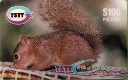 TRINITE & TOBAGO  -  Prepaid  -  TSTT  -  Squirrel  - $ 100 - Trinidad En Tobago