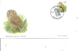 Belgique - Oiseaux - Buzin ( FDC De 2009 à Voir) - FDC