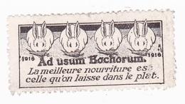 Vignette Militaire Delandre - Patriotique - 1916 Ad Usum Bochorum - Erinnofilia
