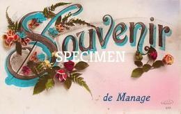 Souvenir De  Manage - Manage