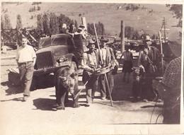 1954 Romania  Gypsies W/ Bear - Gitans Avec Ours - Old  Photo - Personnes Anonymes