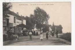 SAINT LUCE - LES BORDS DE LA LOIRE A LA BELLE ETOILE - 44 - France