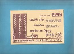 BUVARD -  AGRICULTURE -   SUPERPHOSPHATE DE CHAUX - POUR LA RÉSISTANCE DU BLÉ - Agriculture