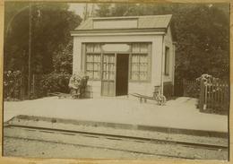 Tirage Citrate Circa 1900. Gare De Bois-le-Roi. Chemin De Fer. Train. Bois Le Roi. - Photographs