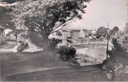 56 - PORT NAVALO / LA PETITE CALE - Sonstige Gemeinden