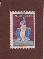 Vignette De 1930 - PROPRETÉ - Dpt. De La MARNE  - Deux Sous Pour La Santé - Contre La TUBERCULOSE - 2 Scannes - Erinnophilie