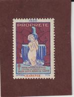 Vignette De 1930 - PROPRETÉ - Dpt. De La CHARENTE  -  Deux Sous Pour La Santé - Contre La TUBERCULOSE - 2 Scannes - Erinnophilie