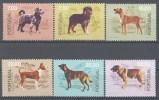 1981 Portogallo, Cani Razze Portoghesi , Serie Completa Nuova - 1910-... República
