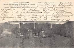 "Environs De Fontenay - Viaduc De Baquenard Sur Le Ruisseau ""le Fougerais"" - Train - Fontenay Le Comte"