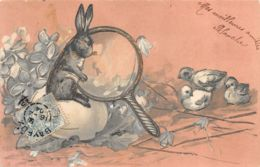 Lapin (Animaux) - Fantaisie - Loupe - Poussin - OEuf - Fleurs - Gauffrée - Animaux & Faune
