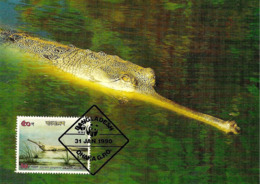 1990 - BANGLADESH - Dhaka - Gharial - Crocodile Gavial Du Gange WWF - Bangladesh