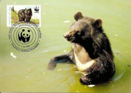 1989 - Pakistan Peshawar  -  Himalayan Black Bear, Ours Noir D'Himalaya WWF - Pakistan