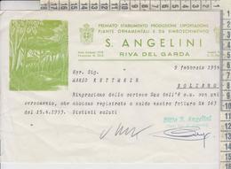 RIVA DEL GARDA -- TRENTO --- S. ANGELINI -- ESPORTAZIONE PIANTE - Italy