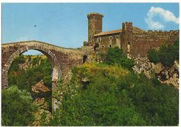 MONTALTO DI CASTRO - VITERBO - CASTELLO DI VULCI -VIAG. - Viterbo