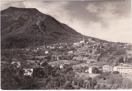 PONTE DELLA VENTURINA - GRANAGLIONE - BOLOGNA - VIAGG. 1957 -82682- - Bologna