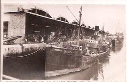 66 DIEPPE Port De Pêche - Dieppe