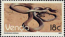 Ref. 28288 * NEW *  - VENDA . 1989. REPTYLE. REPTIL - Venda