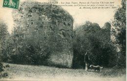 CPA -  DEMANGEVELLE - LES DEUX TOURS  (ETAT PARFAIT) - Francia