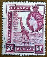 1954 KENYA UGANDA TANGANYIKA Regina Elisabetta Animali Giraffa  - 50c Usato - Kenya, Uganda & Tanganyika