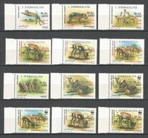 SOMALIA - MNH - Animals - Wild Animals - WWF - 1992 - Francobolli