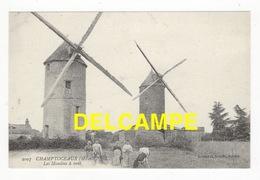 DF / MOULINS À VENT À CHAMPTOCEAUX (49) / ANIMÉE - Windmills