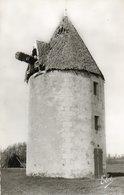 Ile D Oleron       Un Vieux  Moulin   Edit Chatagneau  No 4944 - Ile D'Oléron