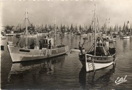 Ile D Oleron       Port De La Cotiniere   Edit Estel  No.7573 - Ile D'Oléron