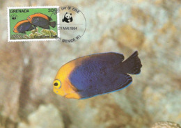 1984 - GRENADA - Ile Grenade - Coral Fleet Fish - Poisson Corail Flameback Cherubfish  WWF - Grenada