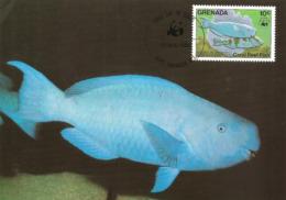 1984 - GRENADA - Ile Grenade - Blauer Papageifisch, Scarus Coeruleus, Blue Parrotfish WWF - Grenada