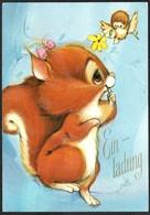 D4508 - Glückwunschkarte - Einladung - Eichhörnchen - JLK - Autres