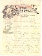 INTONACO VERNICI SOTTMARINE -GIOCHINO VENEZIANI  -TRIESTE-MURANO  VENEZIA  1901  COURRIER - Transports