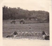 Foto Soldatenfriedhof - Gräber Deutscher Soldaten - 2. WK - 5,5*5,5cm  (48444) - Krieg, Militär