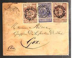 29934 - NE PAS DELIVRER LE DIMANCHE - 1893-1900 Barba Corta