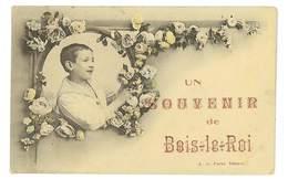 CPA 27 UN SOUVENIR DE BOIS-LE-ROI - France