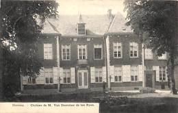 Hamme - Château Kasteel M Van Doorslaer De Ten Ryen (klein Animatie, Bertels 1908) - Hamme