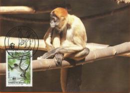 Republica De Honduras 1990 , Geoffroy`s Spider Monkey - Singe Araignée  WWF - Honduras
