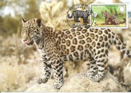 1983 - BELIZE - Jaguar (Panthera Onca) WWF - Belize