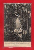 67-CPA LUFTKURORT STRUTHOF BEI SCHIRMECK U. ROTHAU - Schirmeck