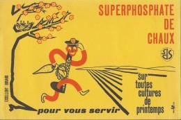 BUVARD Illustration ( Homme Oiseaux Carotte Arbre  ) Superphosphate De Chaux Toutes Cultures De Printemps - Agriculture