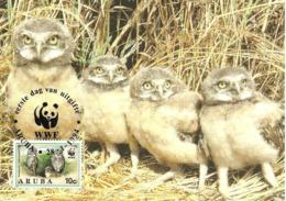 1994 - ARUBA - BURROWING OWL - Chouette Des Terriers WWF - Aruba