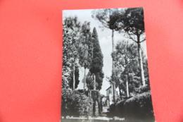 Rieti Collevecchio Sabina Parco Filippi 1967 - Rieti