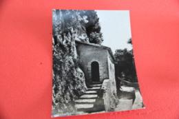 Rieti Greccio Il Santuario Cella Solitaria 1956 - Rieti