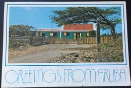 Greetings From Aruba.Neth. Antilles. 1987. - Aruba