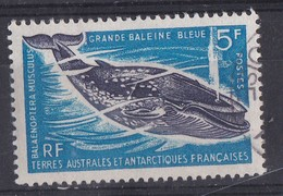 TAAF - N° 22 - Grande Baleine Bleue - 20 % De La Cote - Used Stamps