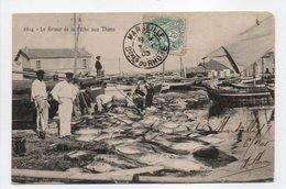 - CPA MARSEILLE (13) - Le Retour De La Pêche Aux Thons 1905 (belle Animation) - Photo Lacour 2614 - - Old Port, Saint Victor, Le Panier